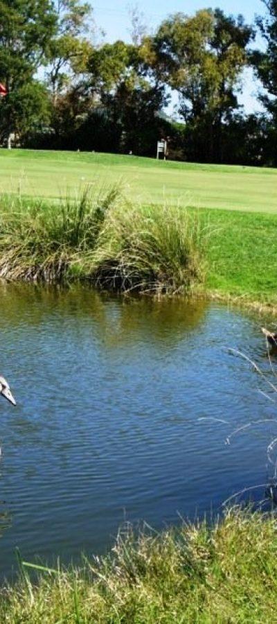 Tarquinia-Golf-Club-8-1